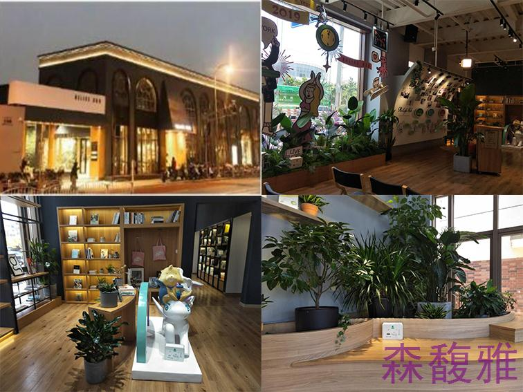 【上海】虹口中心光大安石生活体验馆与森馥雅香薰达成合作